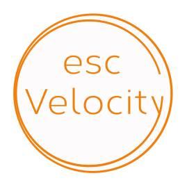 escvelocity logo